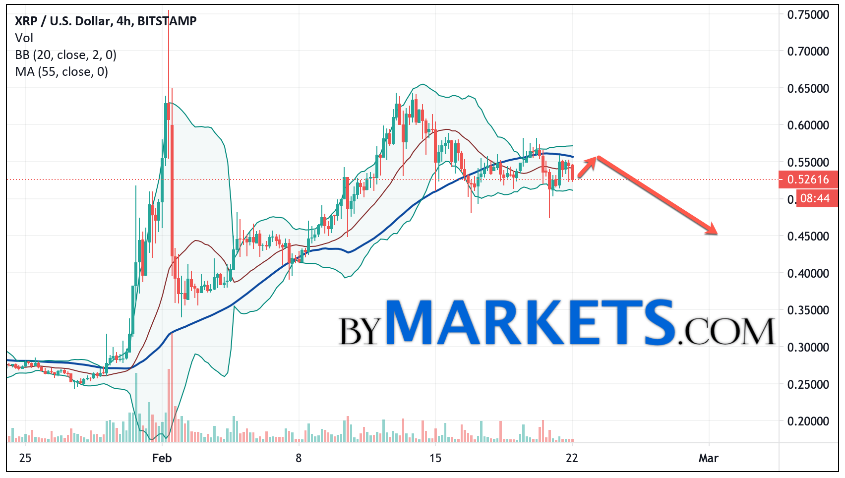 Ripple (XRP/USD) forecast and analysis on February 23, 2021