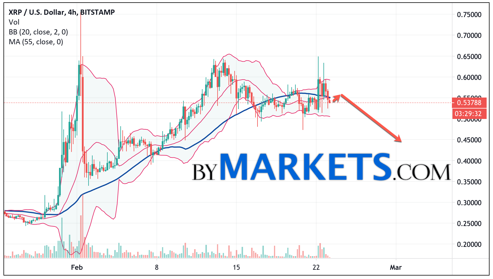 Ripple (XRP/USD) forecast and analysis on February 24, 2021