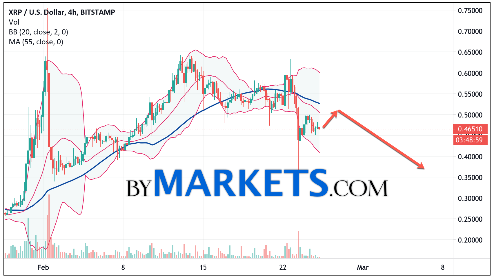 Ripple (XRP/USD) forecast and analysis on February 26, 2021